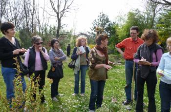 Ateliers et cours de jardinage