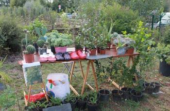 Vide jardin 2021