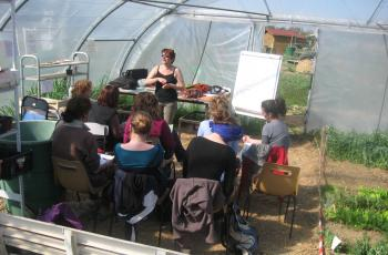Formation Animateur jardin et Porteur de projet jardin, sur les jardins familiaux de Tournefeuille