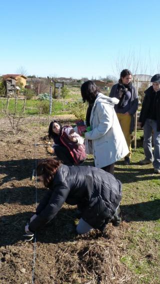 cours de jardinage : alternance de théorie et ... de pratique