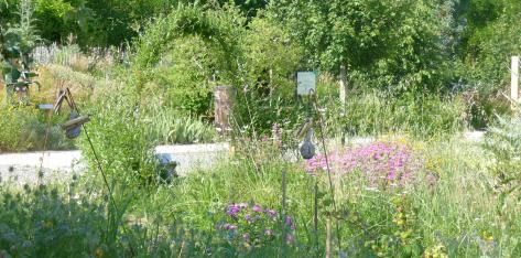 Sur les jardins familiaux
