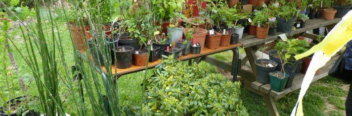 Troc'Plantes