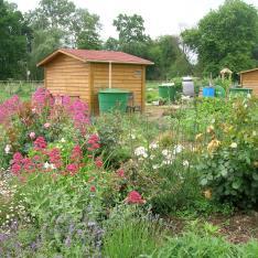 jardins familiaux de Tournefeuille