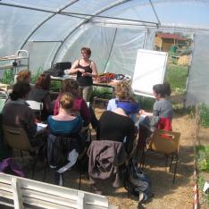Alternance de théorie et de pratique sur les jardins familiaux de Tournefeuille